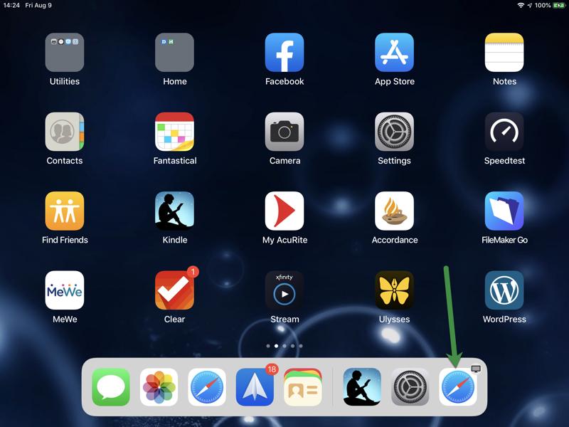 iPad Safari